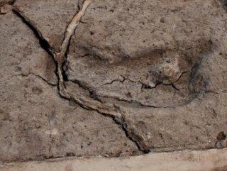 Amerika kıtasındaki en eski ayak izi bulundu
